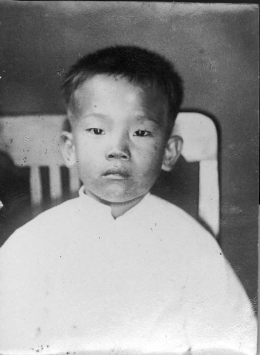 a03dd452a chinese american - Search Results